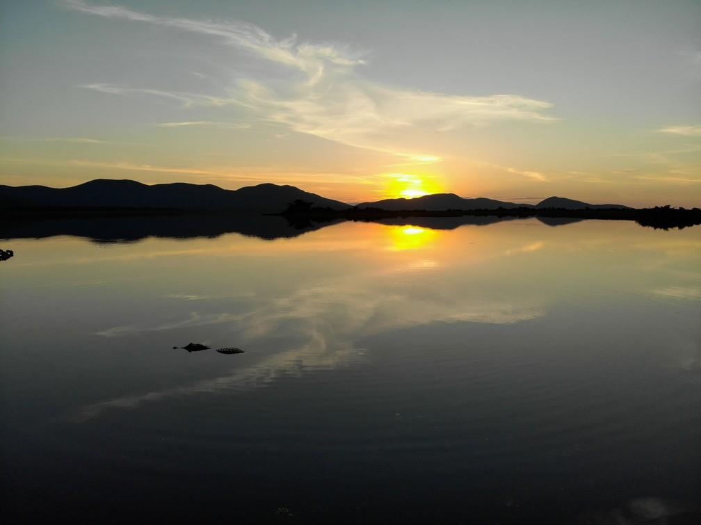 Jacaré descansa na superfície do rio na Serra do Amolar, durante o por-do-sol — Foto: Eduardo Palacio/G1