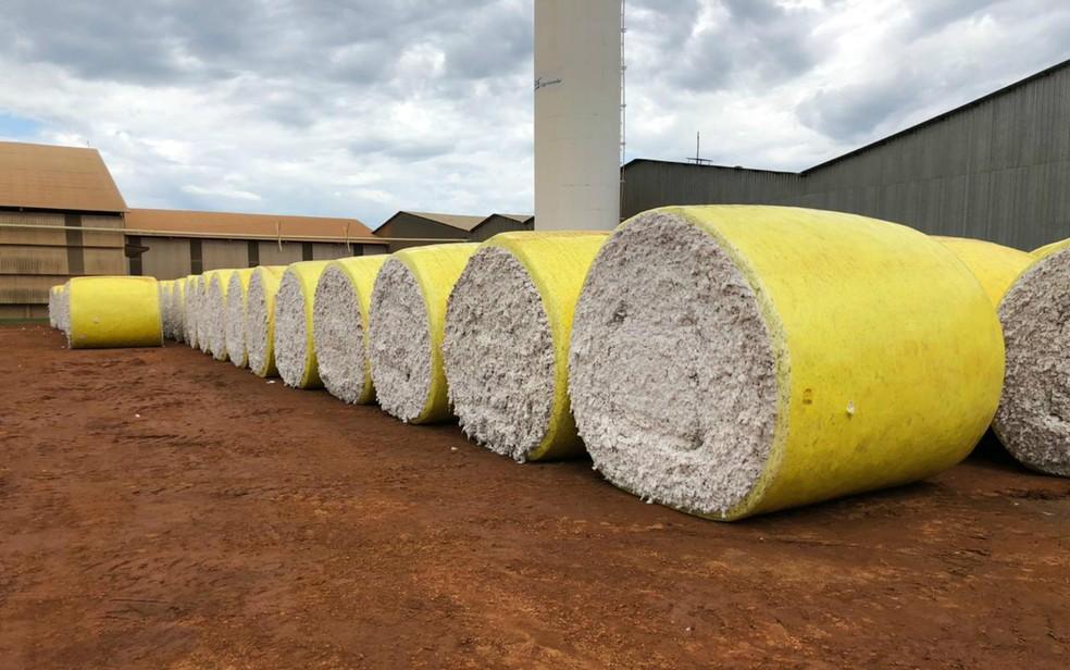 Fardos de algodão, que é modo como o produto é armazenado após a colheita — Foto: Alysson Maruyama/TV Morena
