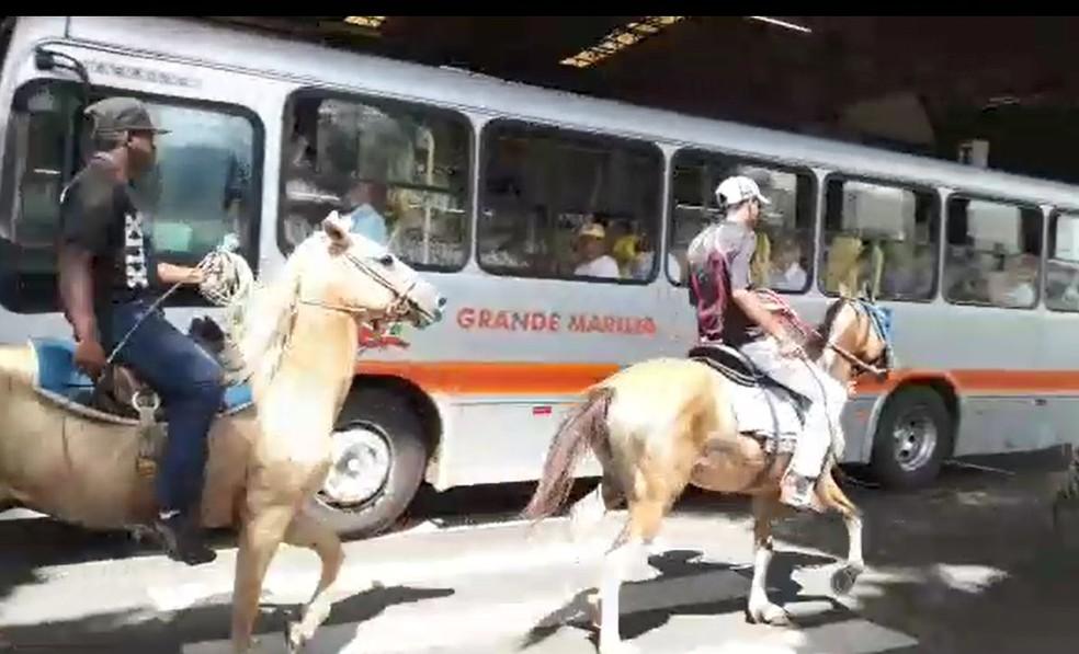 Homens a cavalo foram flagrados no terminal de ônibus de Marília (Foto: Arquivo pessoal)