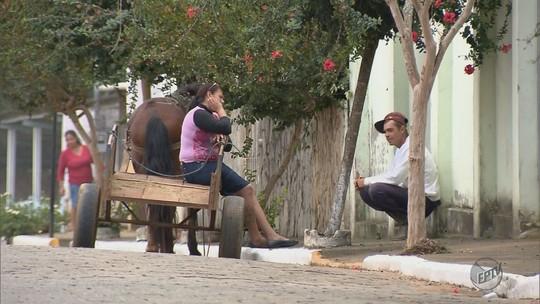 Sul de Minas tem 24 municípios sem registro de casos de dengue