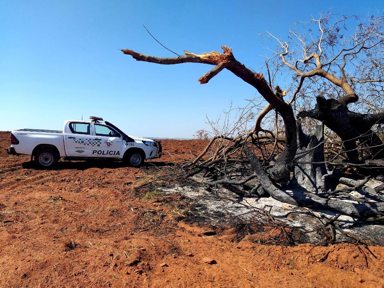 Devastação ambiental em área preparada para o cultivo de mandioca rende multas de quase R$ 100 mil a sitiante