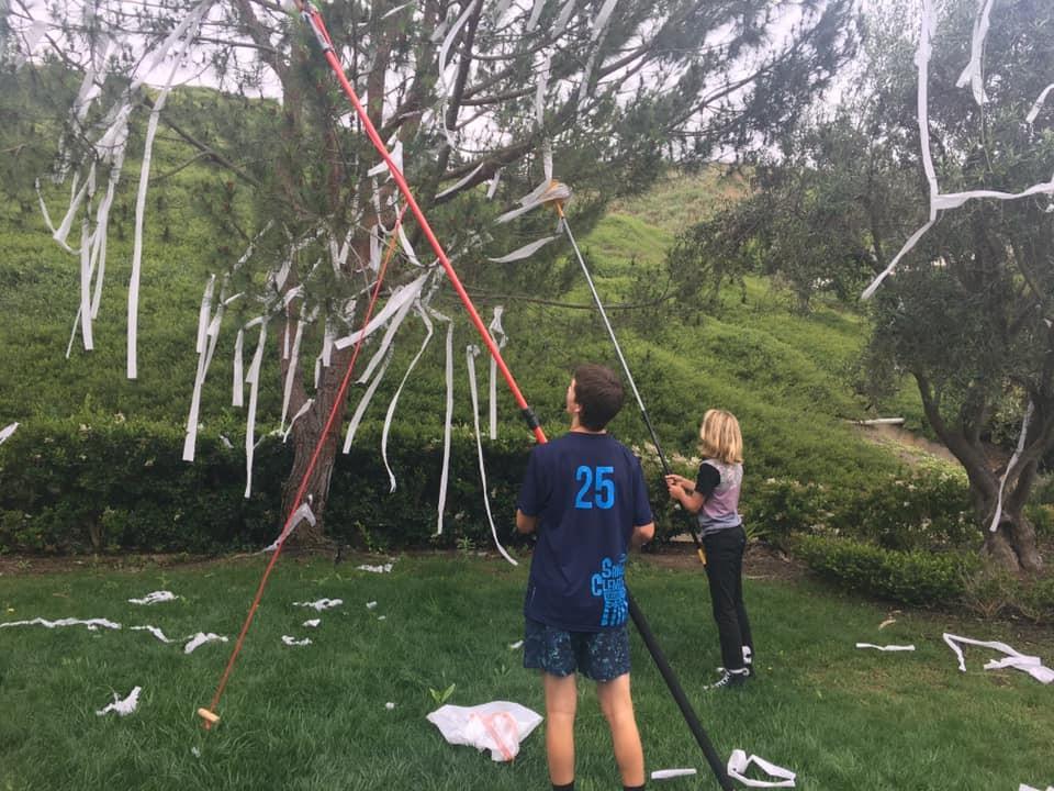 Os filhos de Aubrey removeram parte dos papeis espalhados (Foto: Reprodução Facebook)