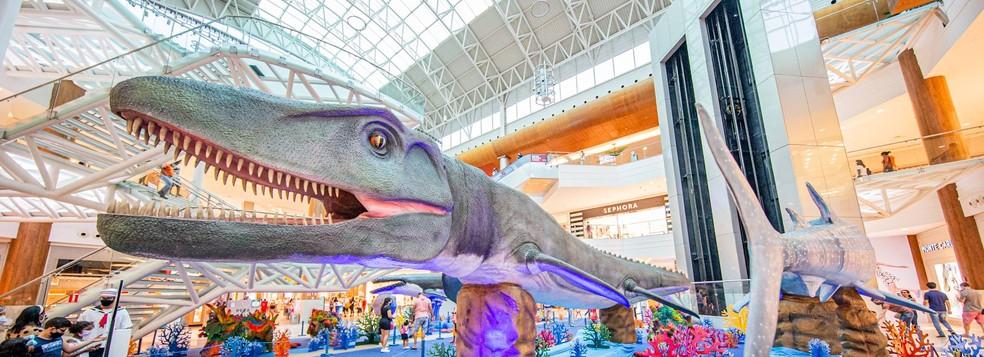 Exposição Internacional Mundo Marinho — Foto: Foto: Divulgação