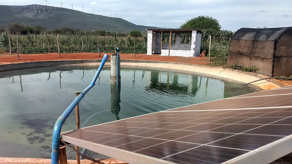No Conjunto Eólico Campo Largo, a empresa garante o fornecimento de água de poços, de forma a estimular a produção agrícola (Foto: Divulgação)