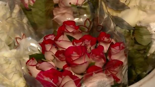 Produção de flores no Paraná tem alta de 100% no primeiro semestre de 2021, aponta Deral