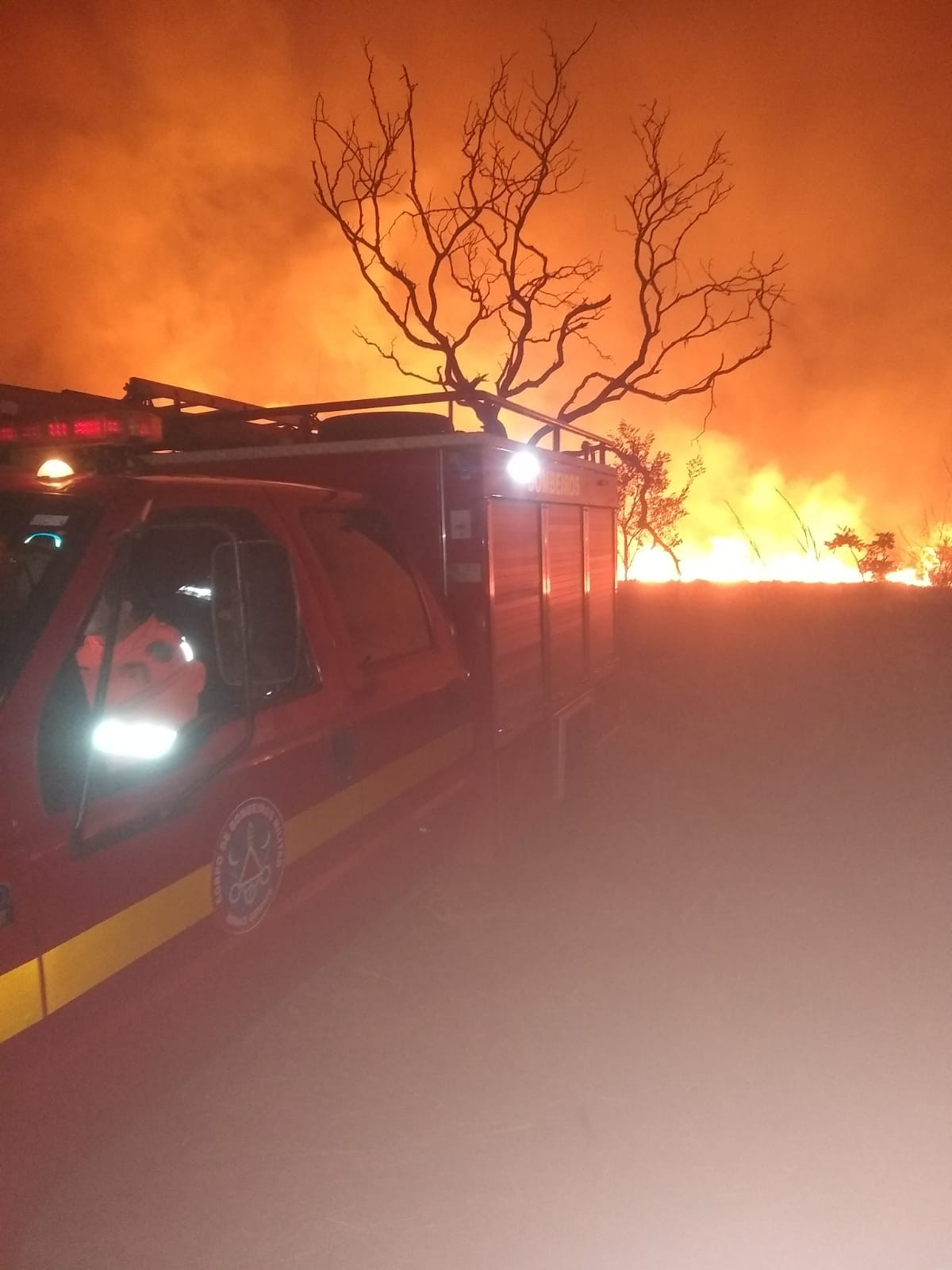 Fogo atinge vegetação perto de universidade em Uberlândia