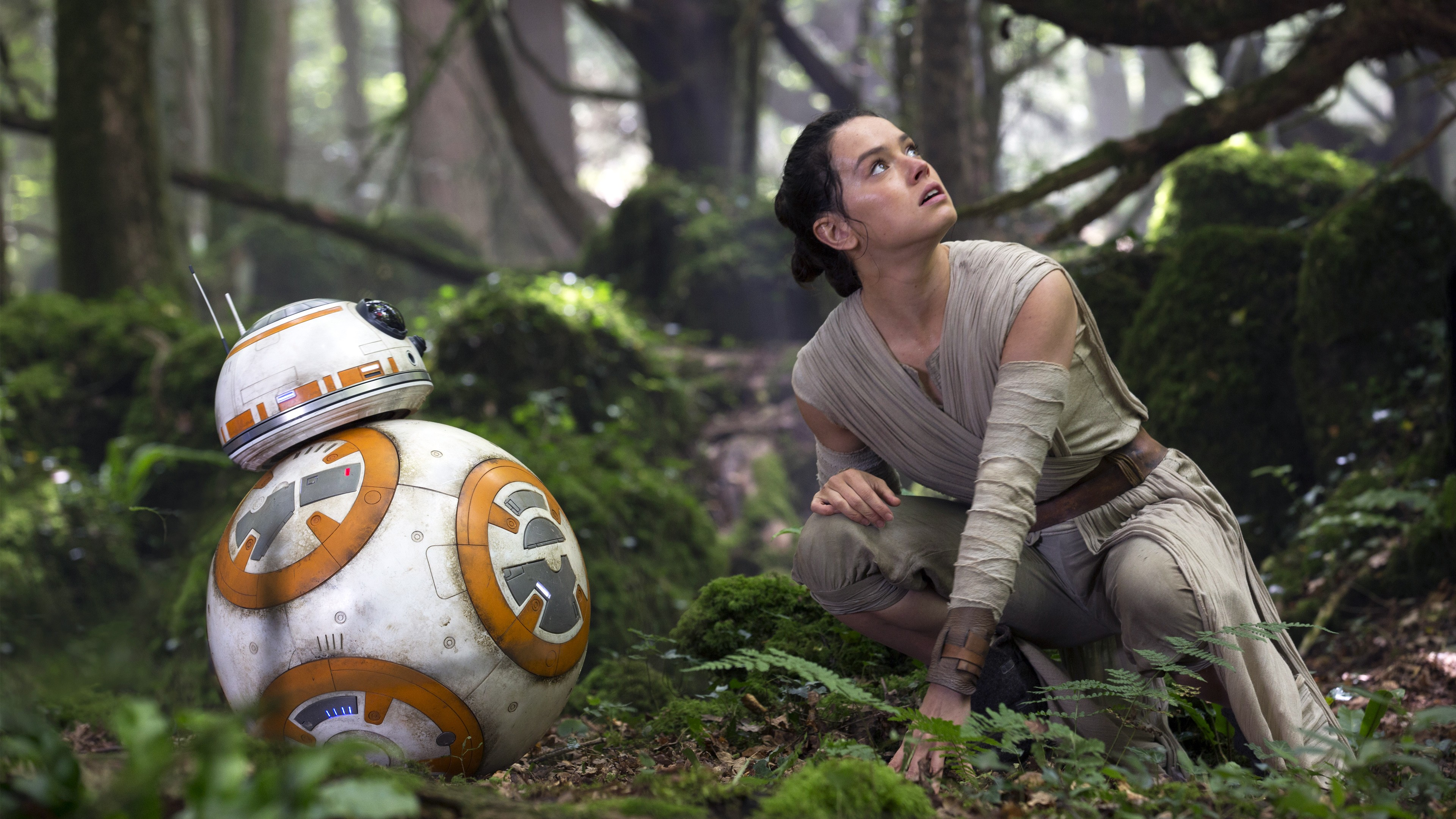Rey (Star Wars Episode 8 The Last Jedi) - Daisy Rey Photo
