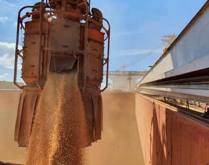 Portos do Paraná devem fechar 2020 com movimentação recorde de 57 milhões de toneladas de mercadorias