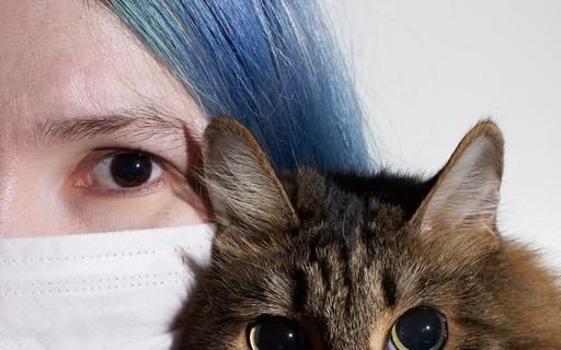 Na Bélgica, gato testa positivo para o novo coronavírus
