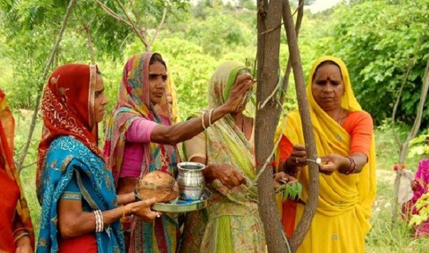 Piplantri é uma aldeia da Índia  (Foto: Reprodução/Pinterest)