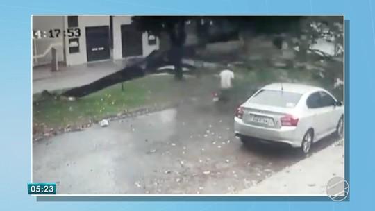 Vídeo mostra momento quando árvore cai sobre motociclista durante chuva em Dourados, MS