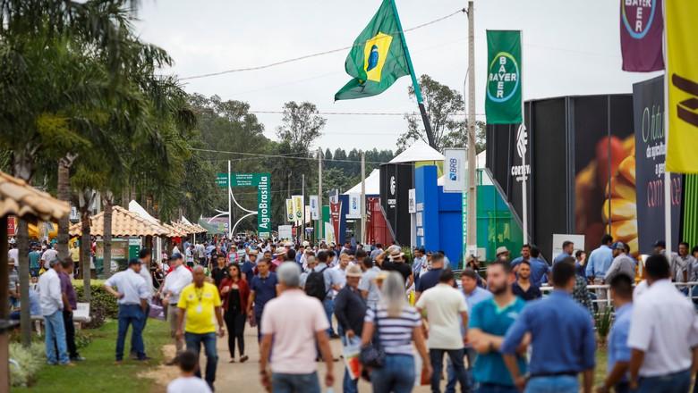 AgroBrasília_2019 (Foto: Wenderson Araujo/Ed. Globo)