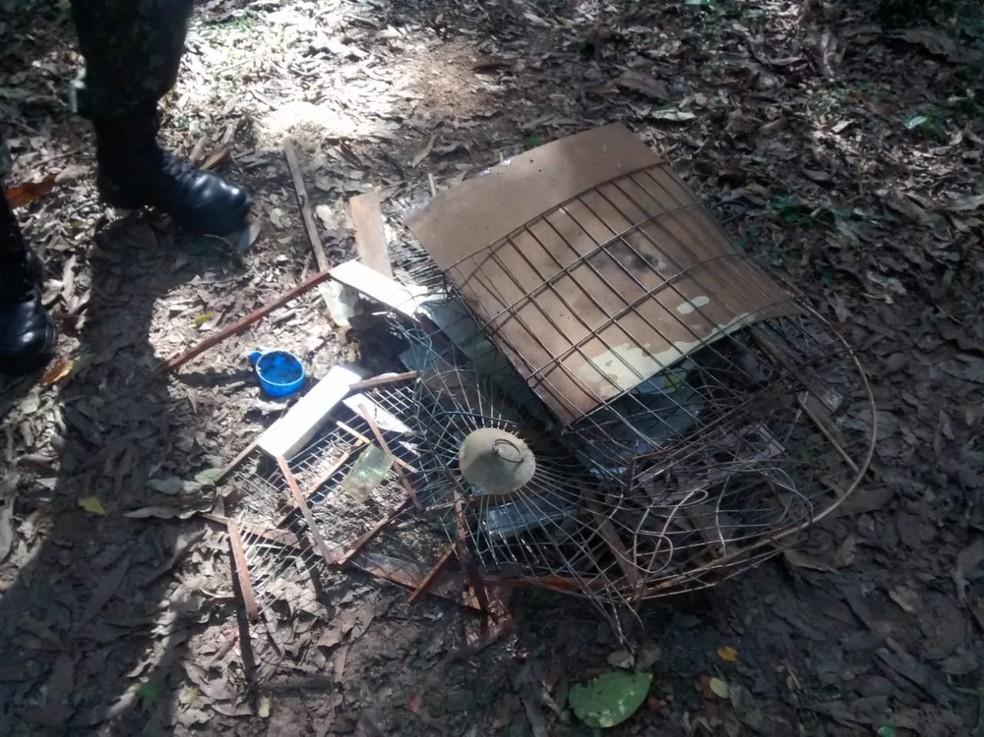 Gaiolas foram destruídas após apreensão em Buri — Foto: Polícia Ambiental/Divulgação