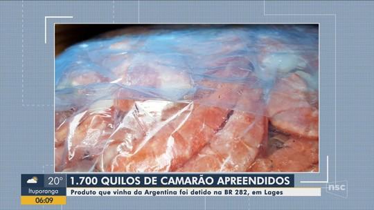 Caminhão-baú com 1,7 mil quilos de camarões argentinos é apreendido na BR-282 em SC