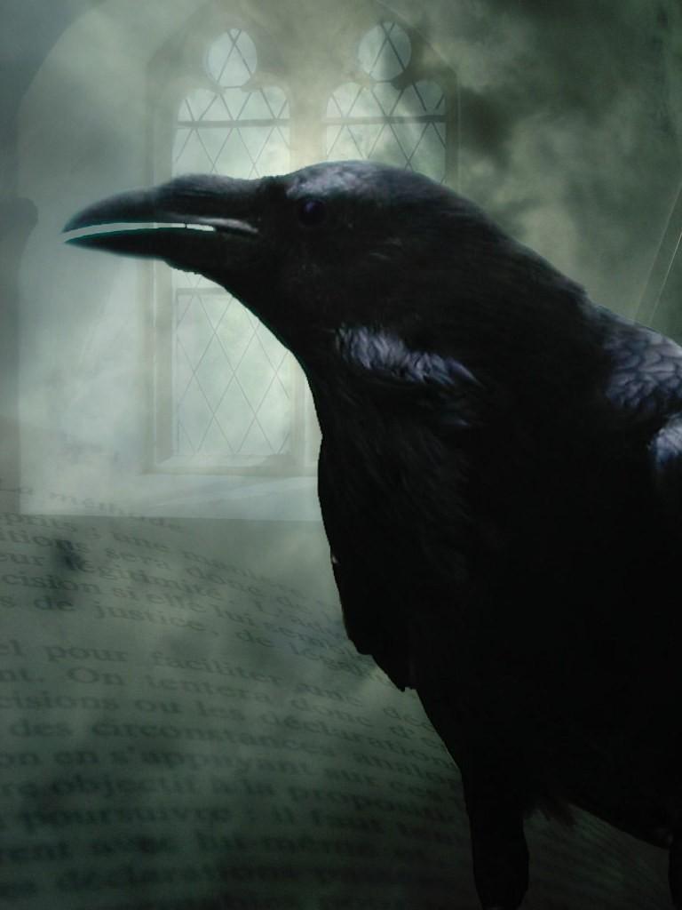 Tradução de Machado de Assis de O Corvo confere uma identidade nacional à obra de Edgar Allan Poe (Foto: Creative Commons/Flickr)