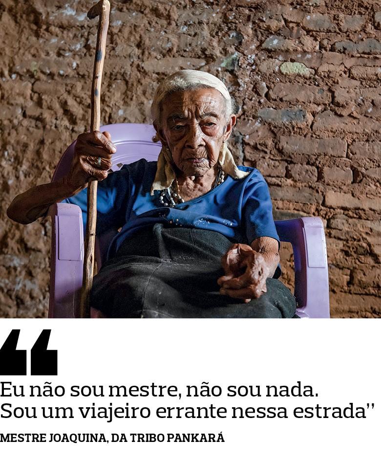Mestre Joaquina,  da tribo Pankará - Com orações, cantos, raízes e garrafadas,  elas preservam os saberes e as práticas da Caatinga (Foto: José Medeiros)