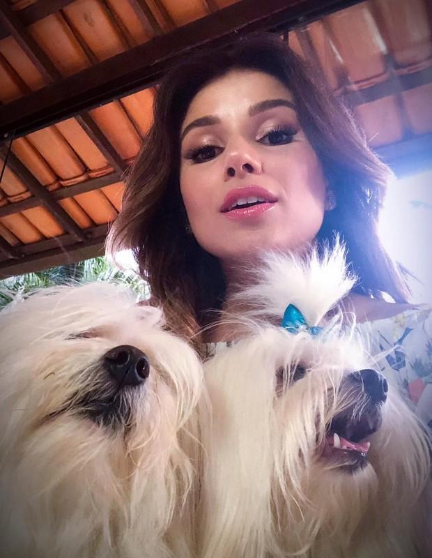 Paulo Fernandes e seus cachorrinhos (Foto: Reprodução Instagram)