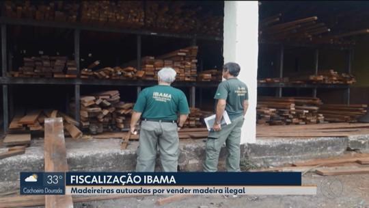 Operação 'Madeira Legal' apreende oito caminhões carregados no Triângulo e Alto Paranaíba