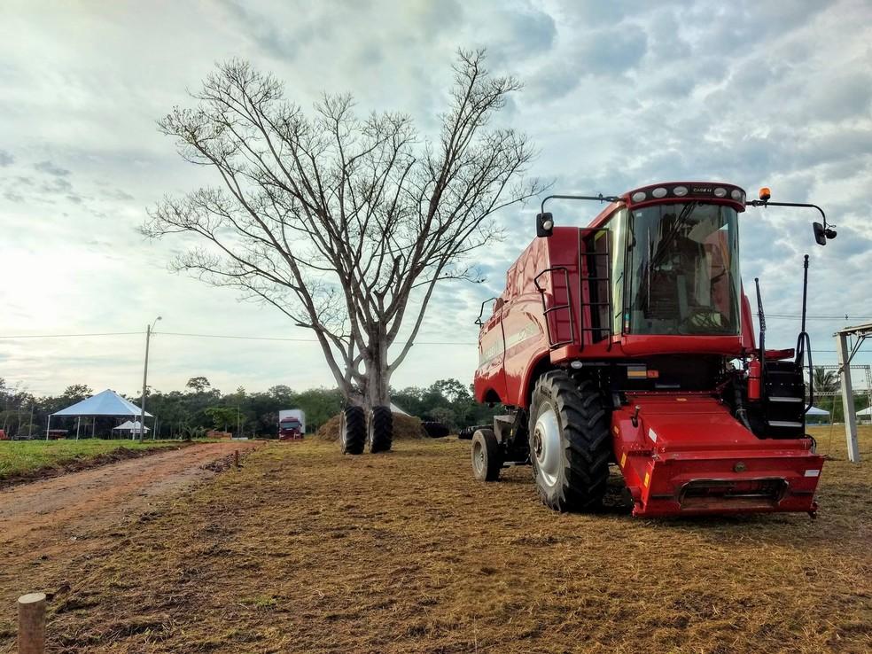 Feira deve movimentais mais de R$ 600 milhões (Foto: Dhiony Costa e Silva/Rondônia Rural Show)