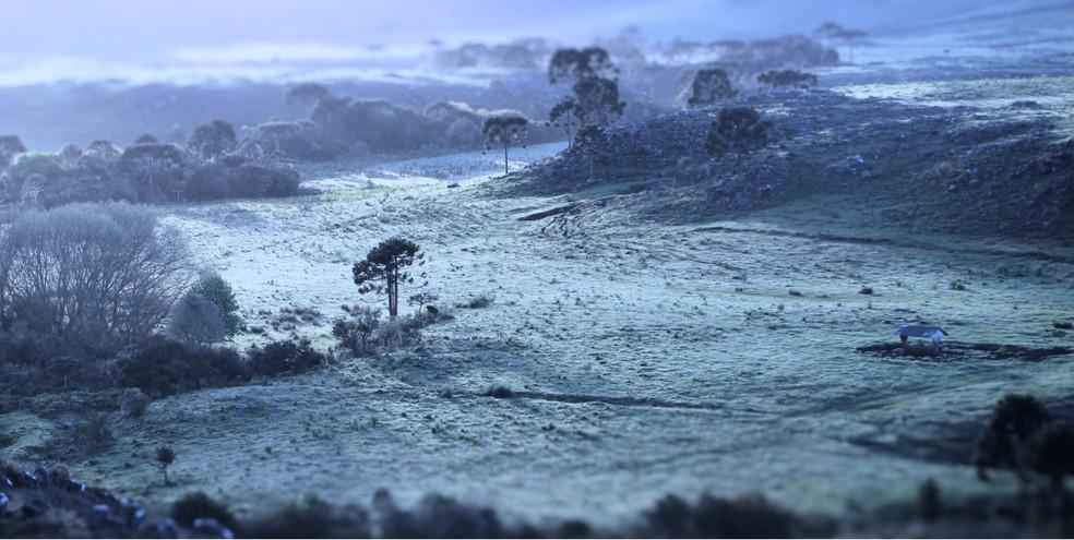 Vale do Caminhos da Neve, em São Joaquim, amanheceu com geada. — Foto: Mycchel Legnaghi