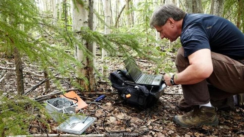 Vladimir Romanovsky coleta registros de temperatura abaixo do solo da floresta (Foto: Anthony Rhoades)