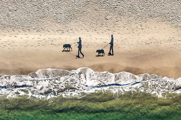 """Intitulada """"2 people, 2 dogs & 4 shadows"""" (2 pessoas, 2 cachorros e 4 sombras, em tradução livre), a fotografia do ucraniano Q-lieb in ficou com o terceiro lugar (Foto: Yevhen Samuchenko / International Drone Photography Contest / Divulgação)"""