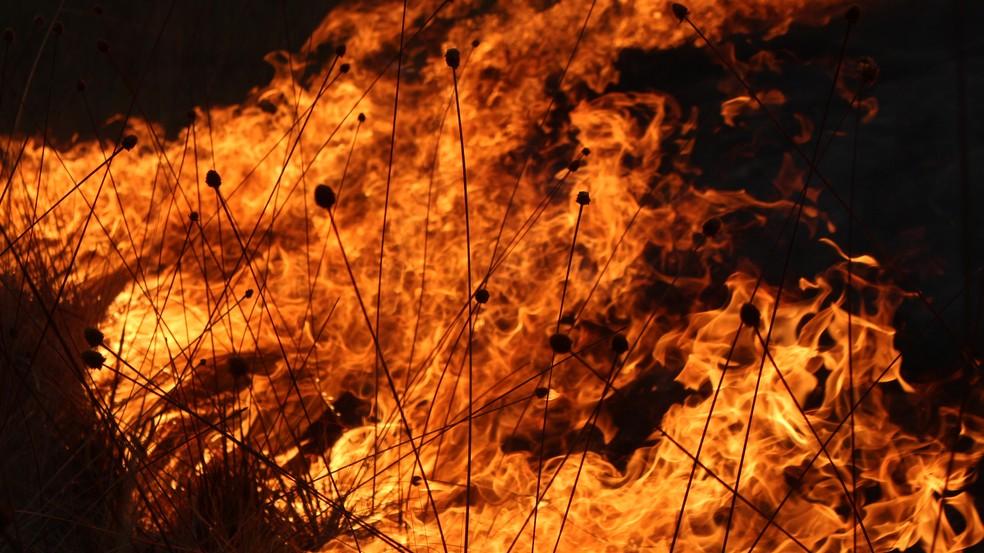 Foco de incêndio que atingiu a Chapada dos Veadeiros (Foto: Hélio Marinho/TV Globo)