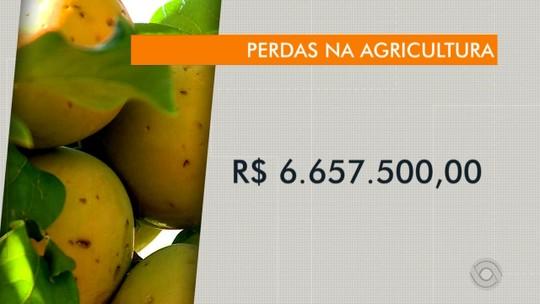 Prejuízos do temporal na agricultura ultrapassam seis milhões de reais