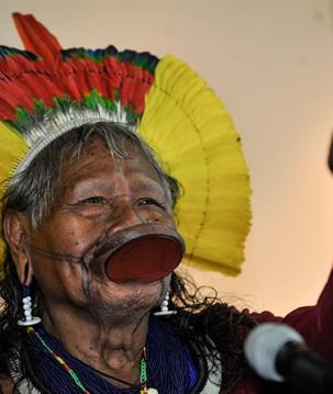 Povos indígenas são essenciais para conservação e bioeconomia da floresta