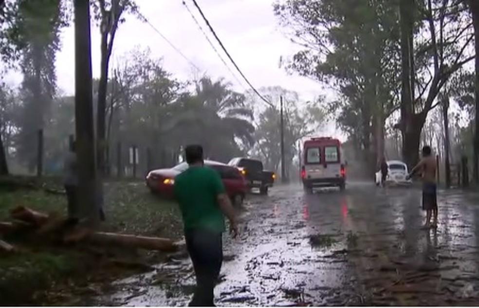 Romeira morre atingida por galho em Pindamonhangaba (Foto: Reprodução/TV Globo)