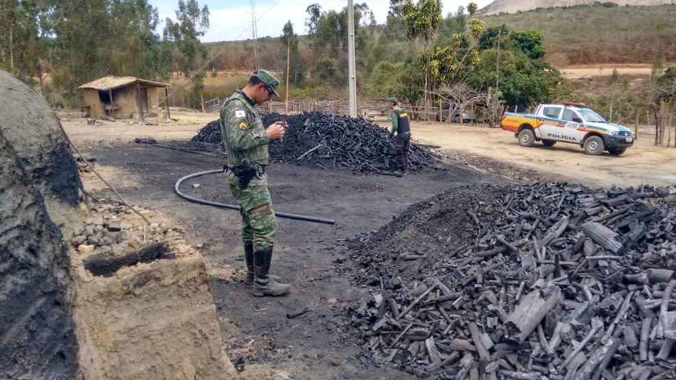 Operação Mata Atlântica em Pé confirma desmate de mais de 1,2 mil hectares em MG — Foto: Polícia Militar de Meio Ambiente/Divulgação