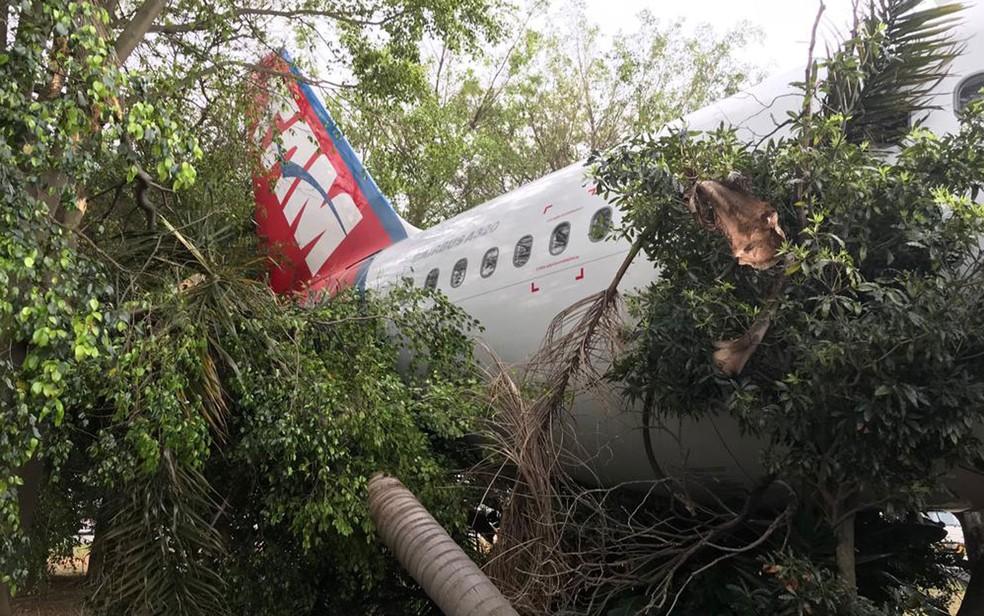 Avião da Tam bate em árvore durante reboque nesta sexta-feira (28) — Foto: Abraão Cruz/TV Globo