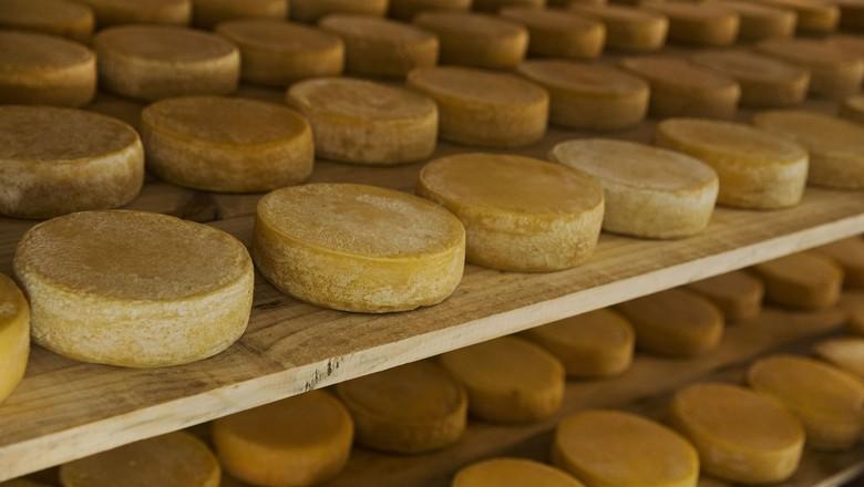 queijos-serra-canastra-mg-rio-sao-francisco (Foto: Lalo de Almeida/Ed. Globo)