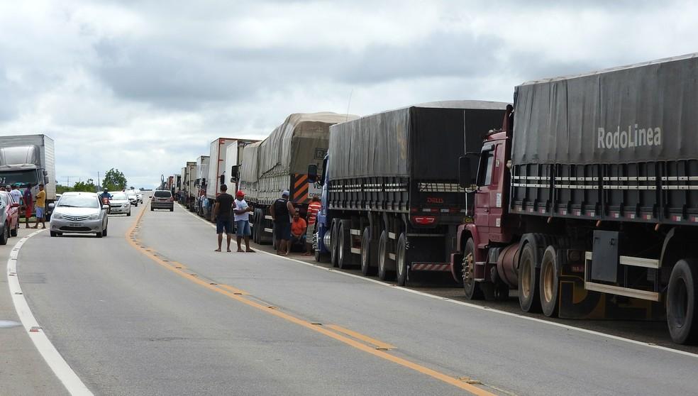 Fila de caminhões na BR-174 no sábado (26), sexto dia de greve dos caminhoneiros (Foto: Alan Chaves/G1 RR)