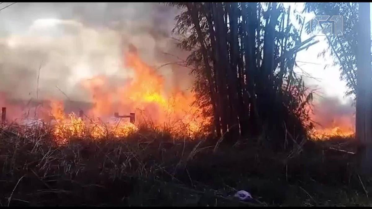 Incêndio em Sobradinho, no DF, atinge 120 mil metros quadrados de vegetação - G1