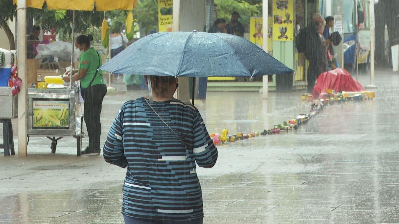 Ribeirão Preto, SP, registra queda de árvores durante chuva com ventos fortes