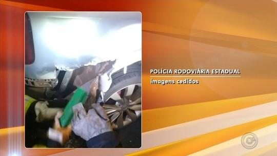 Homem é preso com tabletes de maconha escondidos em lataria de veículo em Rio Preto