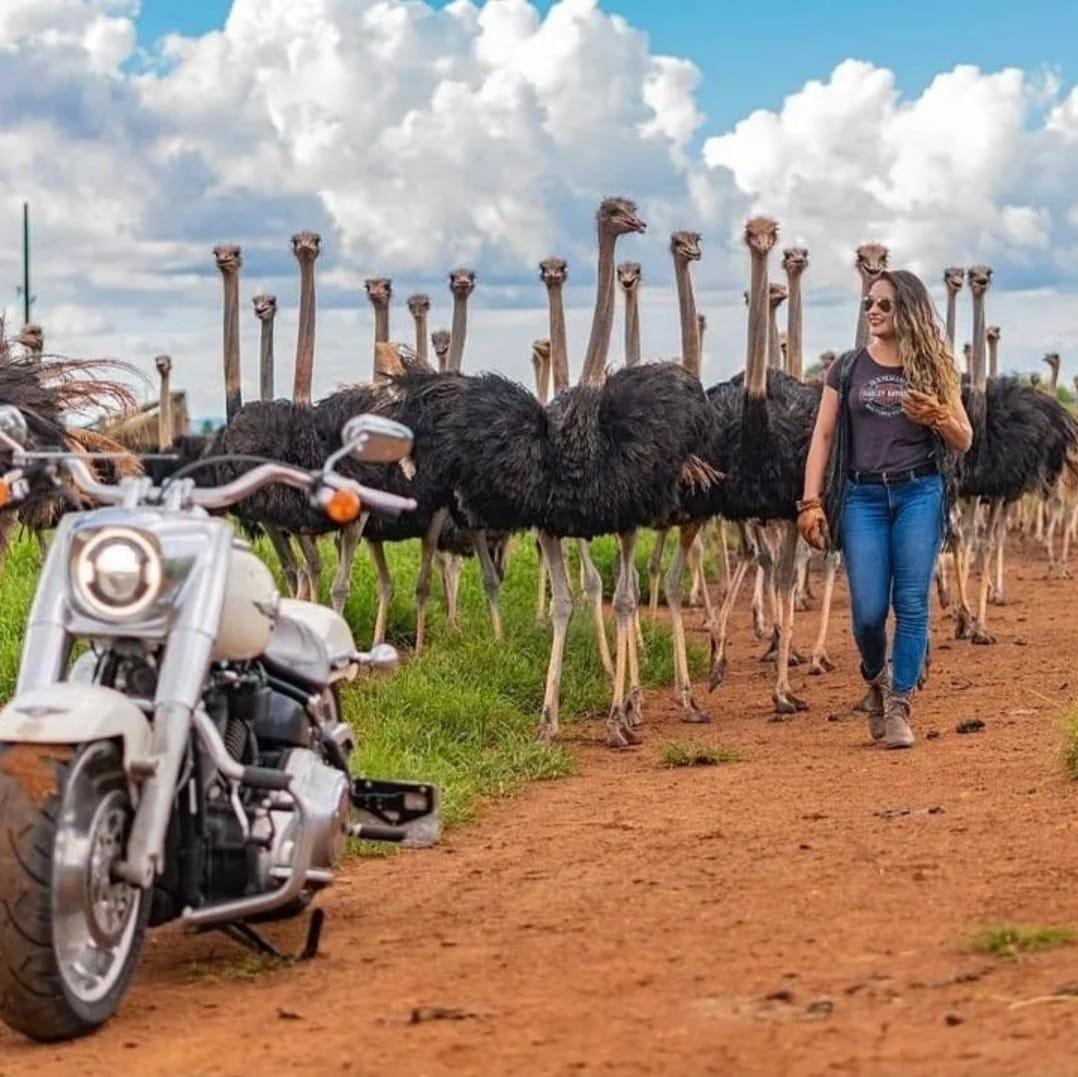 Arquiteta roda 6 mil km em cima de moto para mostrar paisagens incríveis de MS