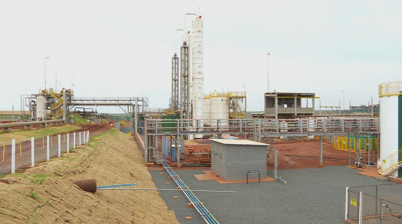 Planta de biogás em SP pode produzir energia para abastecer cidade de 150 mil habitantes por um ano thumbnail