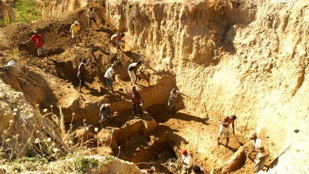 Os ossos dos elefantes fora encontrados por pesquisadores nessa região de Madagascar (Foto: Zoological Society London via BBC News Brasil)