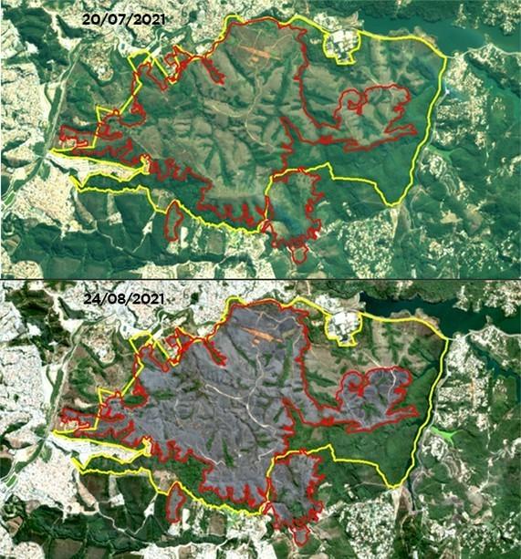 Incêndio destruiu 53% do Parque do Juquery, mostram imagens de satélite (Foto: Divulgação/Secretaria de Infraestrutura e Meio Ambiente de São Paulo)