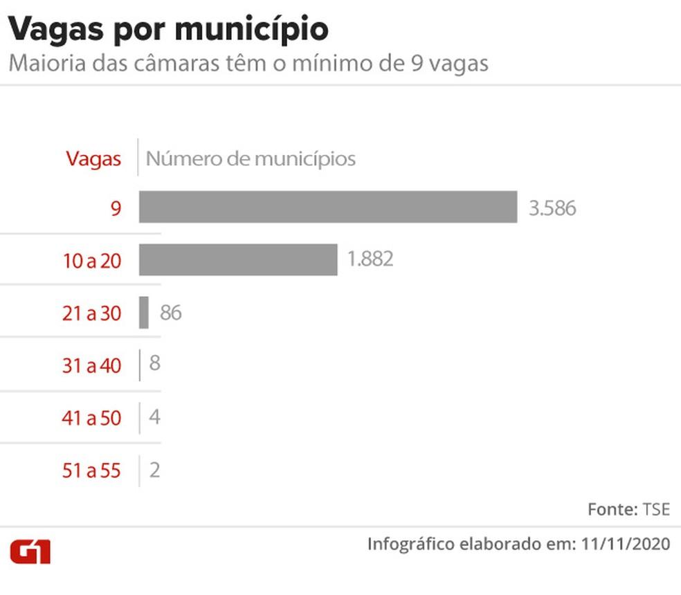 Vagas nas câmaras municipais por cidade — Foto: Aparecido Gonçalves/G1
