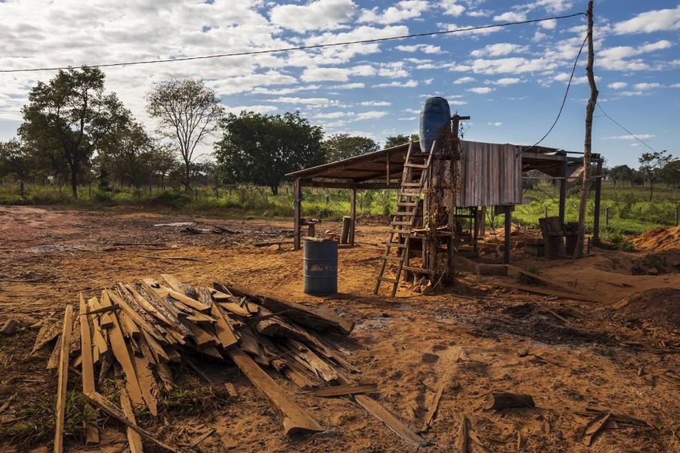 Uma das duas madeireiras encontradas pela Human Rights Watch a 5 km do território indígena, em Amarante do Maranhão, em junho de 2018. A madeireira funcionava a céu aberto, sem cercas ou camuflagem das árvores, a 100 metros de uma grande rodovia. — Foto: Brent Stirton/Getty Images for Human Rights Watch