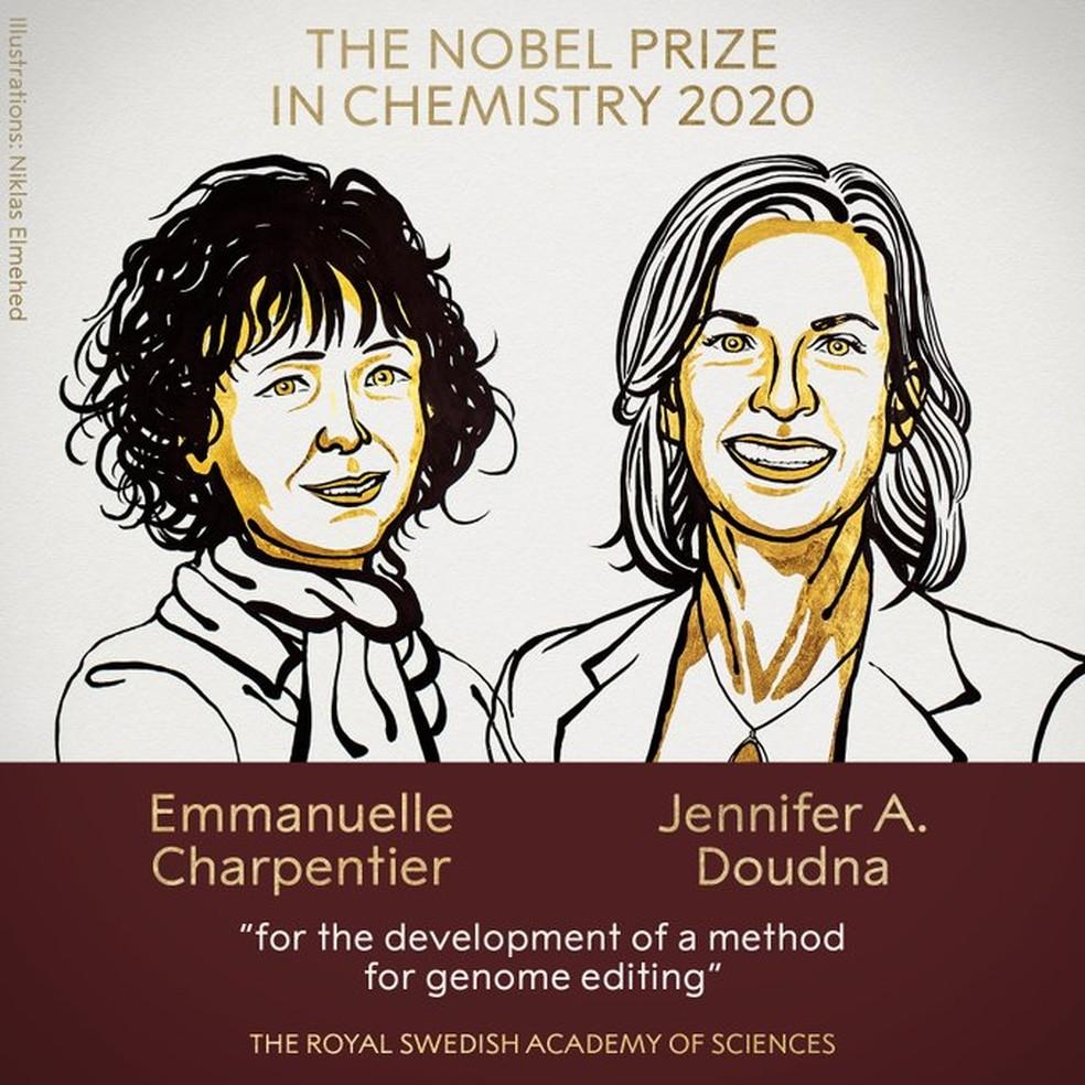 Emmanuelle Charpentier e Jennifer A. Doudna são as ganhadoras do Prêmio Nobel 2020 em Química, anunciou a Academia Real de Ciências da Suécia nesta quarta-feira (7), pelo desenvolvimento do Crispr, método de edição do genoma. — Foto: Nobel