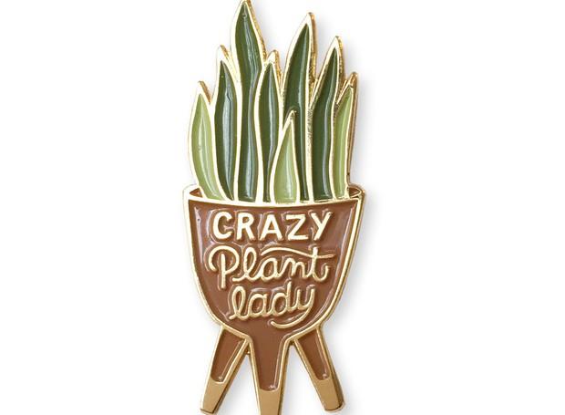 A Louca das Plantas, em tradução livre, é a legenda que aparece no vaso de espada-de-são-jorge (Foto: Instagram/Reprodução)