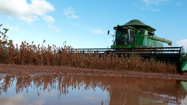 agricultura_soja_colheita (Foto: José Medeiros/Ed.Globo)