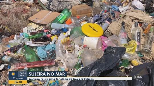 Voluntários retiram mais de 1 tonelada de lixo de praia em Governador Celso Ramos