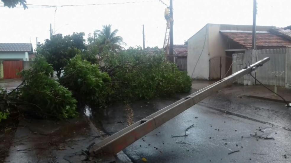 Árvore tombou, enroscou na fiação e derrubou um poste em Pirassunungaorpo de aposentado de 81 anos foi encontrado em córrego em Dourado (Foto: Defesa Civil/Divulgação)