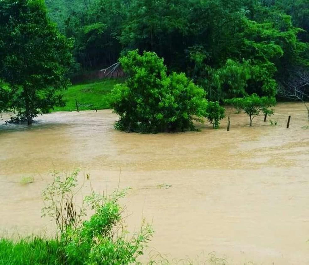Várias propriedades estão alagadas em distrito rural do Carmo, no RJ (Foto: Camilla Estulano da Silva/Arquivo Pessoal)