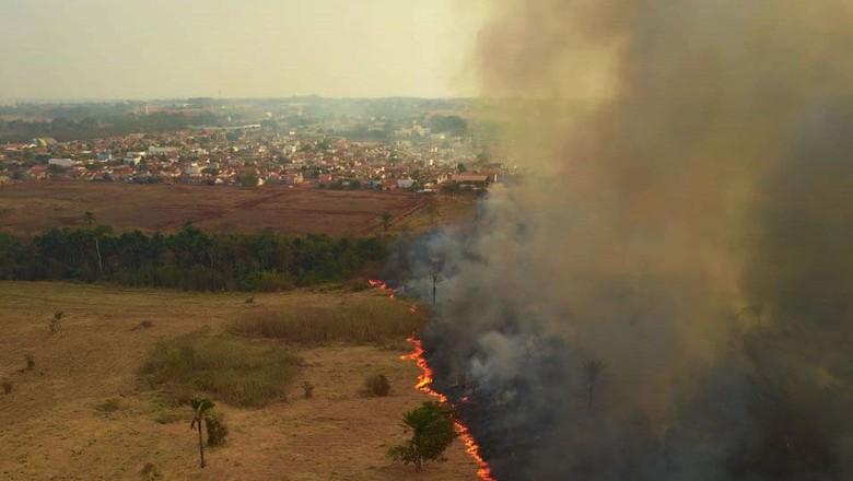 Fogo no Pantanal (Foto: Mayke Toscano/Secom-MT)